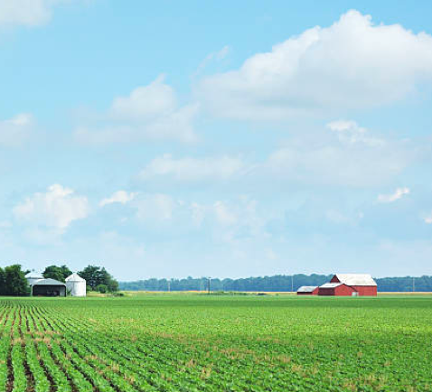 An isolated Indiana soybean field and farm